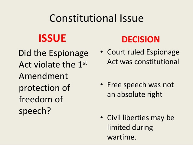 constitutional issues essay